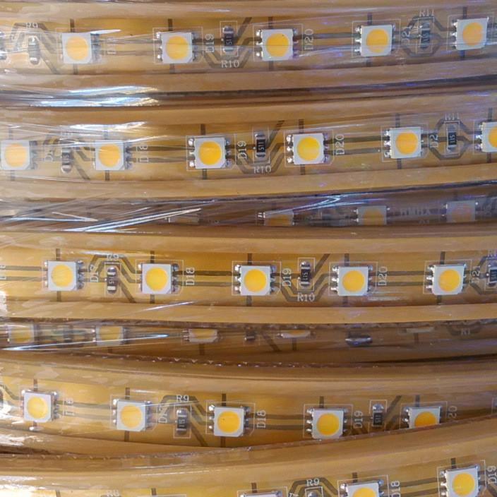 厂家批发防水5050led灯带 RGB七彩 双色变光 室内装饰柔性软灯条