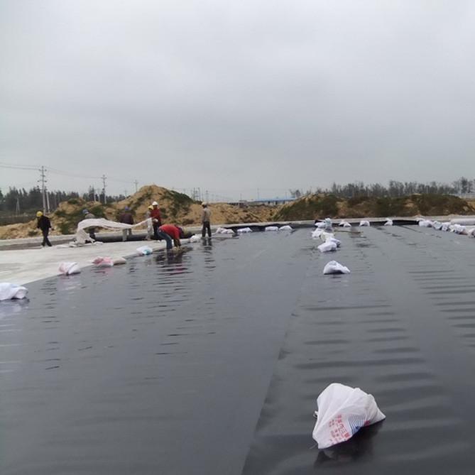 东方特价供应土工膜 EVA土工膜 LDPE土工膜 水产养殖专用地膜