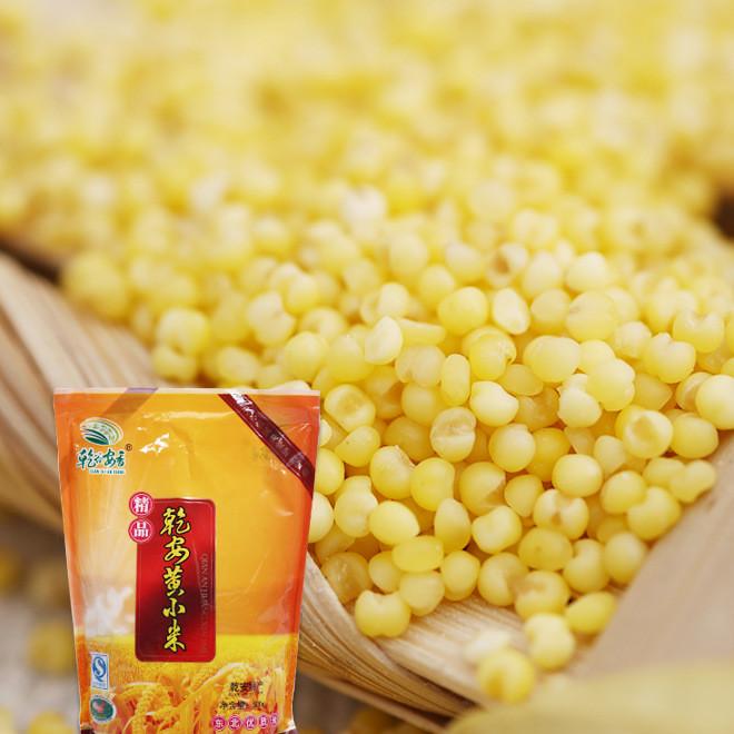 东北特产优质弱碱性有机乾安黄小米 五谷杂粮批发粥米500g袋装