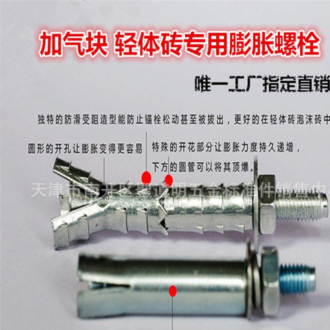 砌块锚栓膨胀螺栓 轻体砖泡沫砖锚栓气泡砖轻体砖专用膨胀螺丝