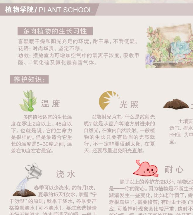 多肉植物习性