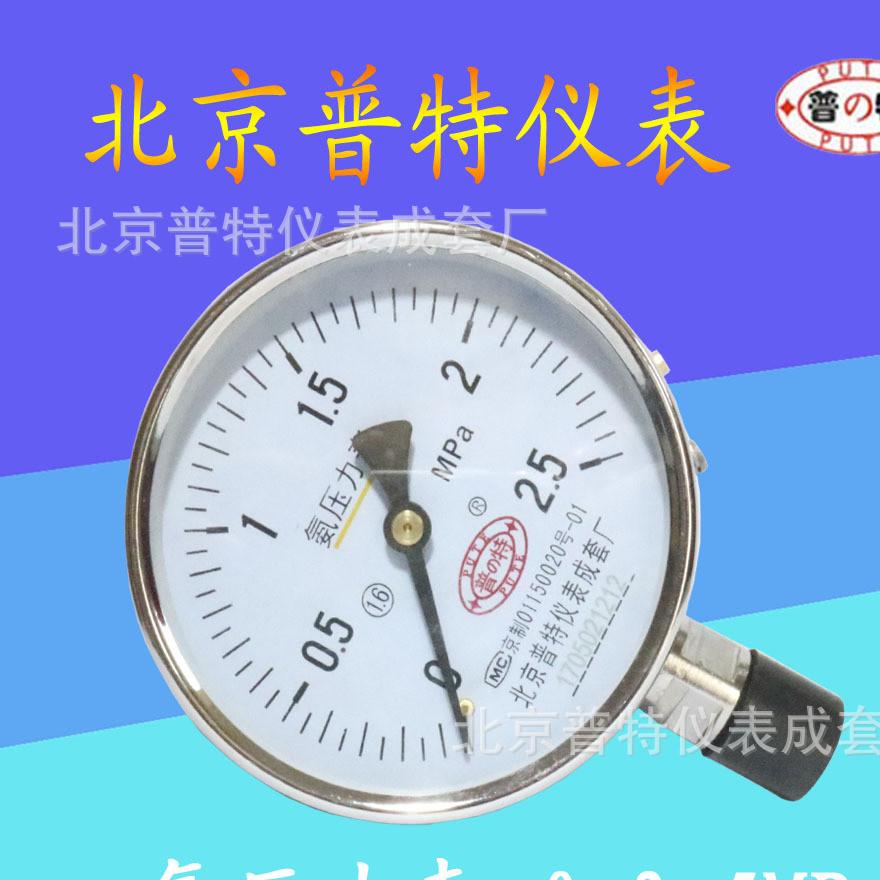 北京普特氨压力表氨气压力表氨用压力表YA100氨用压力表